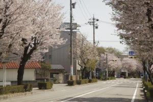 松任中学(クスリのアオキからの眺め)