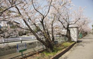 松任中学中村用水の看板