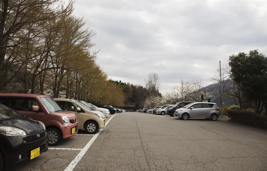 樹木公園駐車場