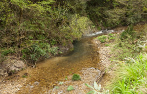 神社前の川