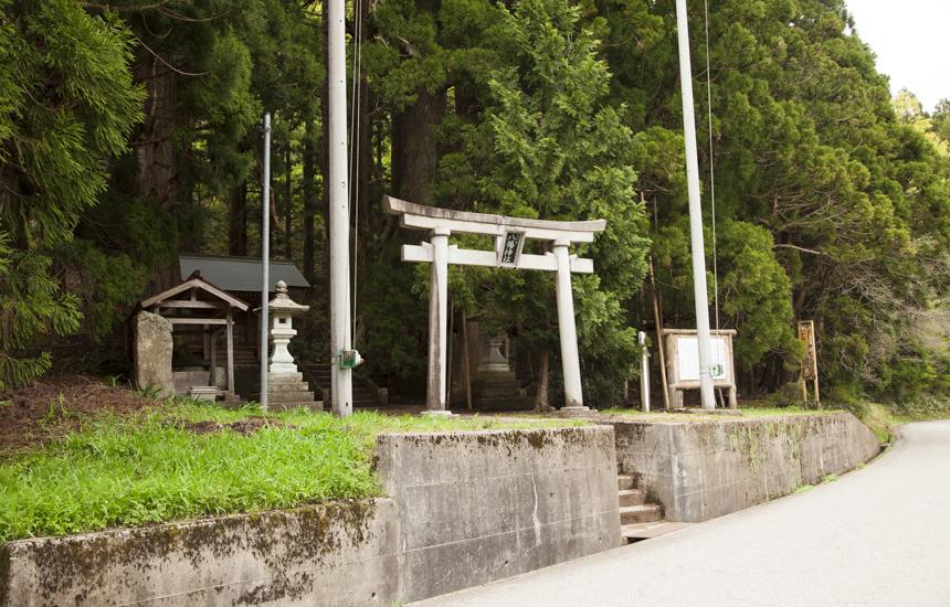 五十谷の大杉の神社外見