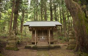 五十谷の大杉神社