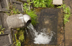 神子清水の水
