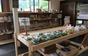 河内じばさん野菜販売