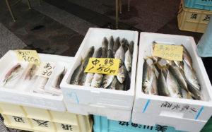 マルシェ ドゥ ハクサン 魚