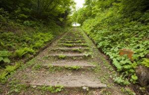 ブナのこみち行きの階段
