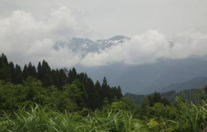 白山高山植物園ジオパークアップ
