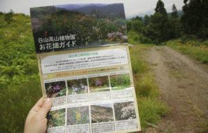 白山高山植物園ガイド