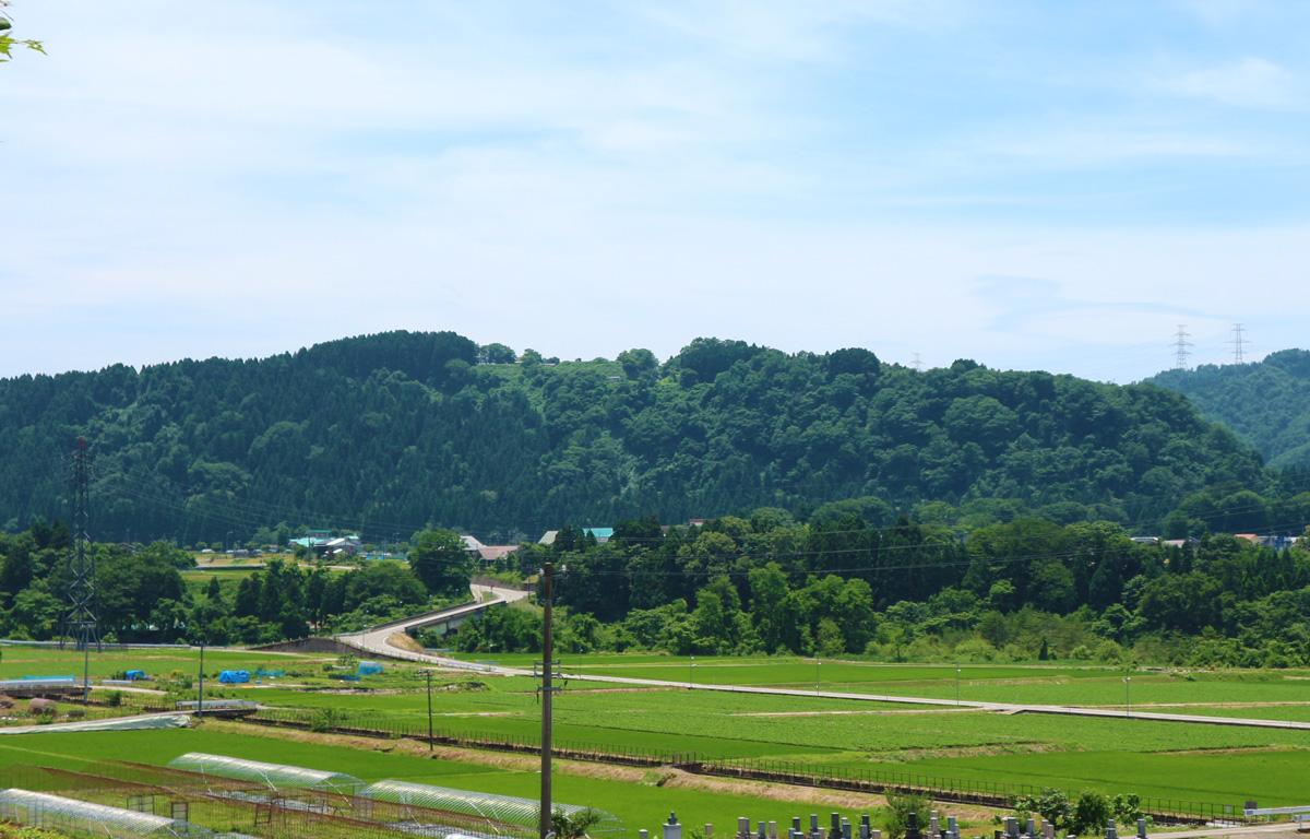 吉野園地から見る鳥越城跡