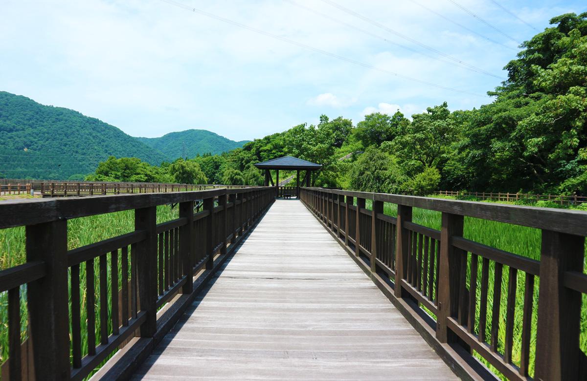 吉野園地 水生植物園