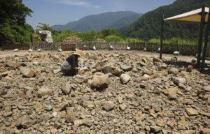 化石掘り中